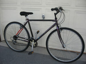Raleigh 18 Speed Chromoly Hybrid