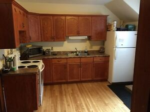 Beautiful Downtown 1 Bedroom Apartment Available Nov 1st