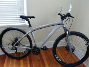 24 Speed Custom Built Specialized Mountain Bike