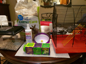 Mice/hamster items for sale