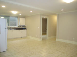 2 bedroom suite in a new house, bright high ceiling ,included f