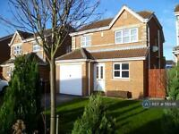 3 bedroom house in Raleigh Drive, Hull, HU9 (3 bed)