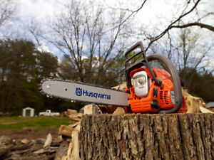 Generators Starting at $599 & Chainsaws $279 In Stock!!