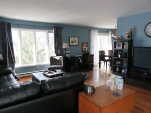 Newly Renovated Bright 2 Bedroom Flat Lake View