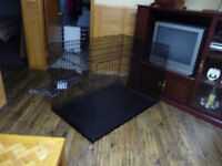 Giant Wire Kennel