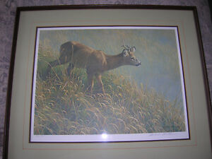 Robert Bateman L.E. Print Mourning Dew- Roe Deer Kingston Kingston Area image 5