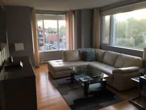 Seeking roommate for downtown apartment