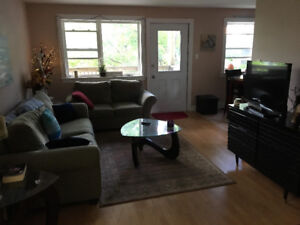 ROOMMATE WANTED: 1 bedroom in a 2 bedroom fully furnished apt.