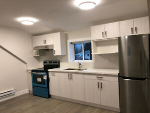BRAND NEW laneway studio suite for rent in prime location!