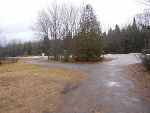 10 Acres with 3 BR Cottage Peterborough Peterborough Area image 4