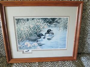 WILDLIFE ART (PRINT) Christine Wilson