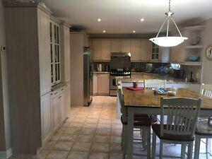 Kitchen with Granite Counters for sale - Removal January 2017