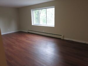 Double Living Room, LARGE 2BDRM, 2 BLOCKS, FROM VICTORIA PARK, L