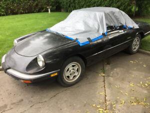 Parting a 1989 Alfa Romeo spider veloce