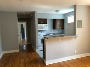 RENOVATED ONE BEDROOM-STEPS FROM SMU & DOWNTOWN-IN SUITE LAUNDRY