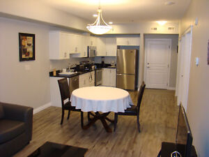 Luxury fully furnished new one bedroom condo (weekly/monthly)