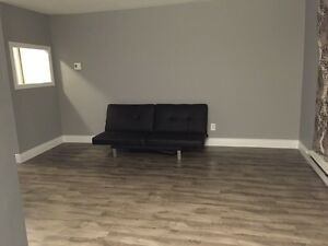 2 BEDROOM ALL INCLUSIVE (NEWLY RENOVATED) London Ontario image 3