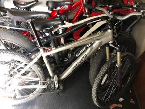 Specialized Hardtail Mountain Bike