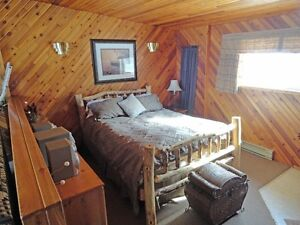 Deluxe lakefront cabin rentals at Tall Timber Lodge