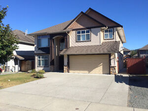 Large home w/ suite in great neighbourhood