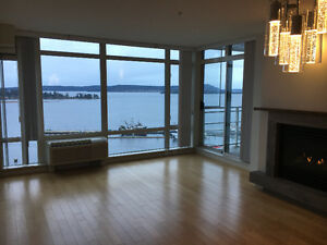 Executive waterfront downtown condo