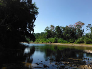 2 lots 3 acres each in Costa Rica 8 km from the ocean