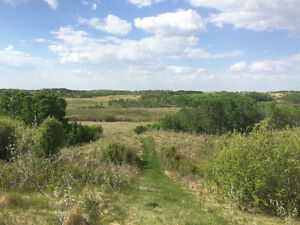 Beautiful one of a kind acreage 19.84 acres East of Balgonie