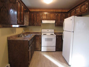 Nice & clean 2 bedroom apt for rent in Glace Bay.