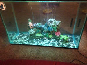 Great condition 65 gl tank