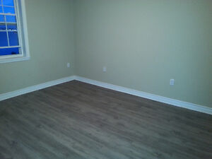 Looking for a responsible, clean roommate