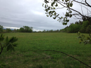 74.91 Acres of Freehold Agricultural Land in Humber Valley!!