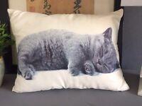 British shorthair soft kitten cat cushion new