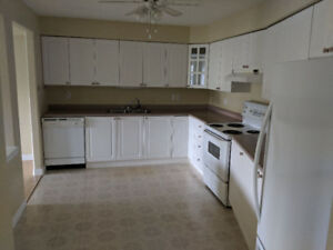 Condo for Rent, Available October 15th