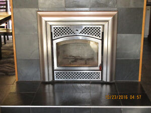 Fireplace Insert Kingston Kingston Area image 1