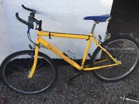 Mountain bike. Well used but still pretty good for age. Cheap!