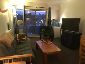 Bright 2 bedroom apt. on McGill campus downtown
