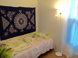 MAY 1st-Furnished room in a 4 1/2 near McGill & Concordia