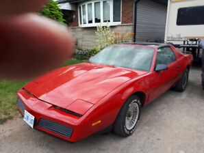 Driver wanted 83 Trans Am  5 speed restored very fast