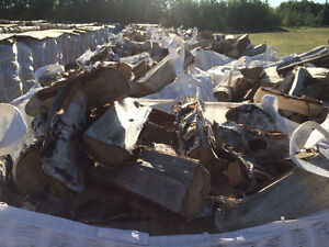 Seasoned BIrch Firewood Regina Regina Area image 1