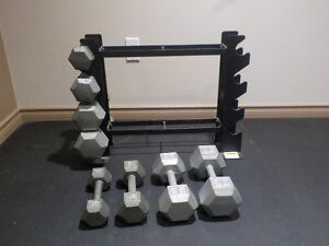 Hex Dumbbell set with Steel Handle Set