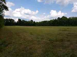 40 Acres on County Road 6, 10 minutes to Cat Centre Kingston Kingston Area image 7