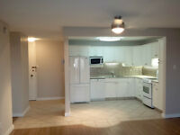 Beautiful Modern 1 BR Condo in Westwood House (St. James)