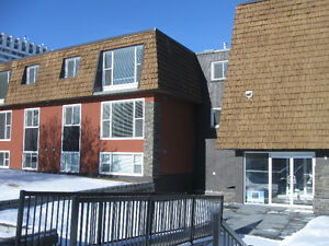 TOP FLOOR Fully Renovated 2 Bedroom Close to Chinook Mall