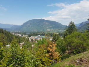1.32 acres over looking the city of Castlegar!
