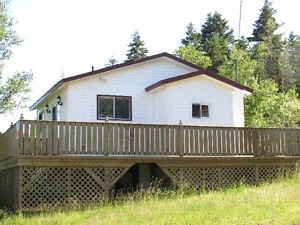 384 TURKSWATER ROAD, MAKINSONS..COTTAGE COUNTRY St. John's Newfoundland image 1