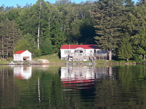 Waterfront Cottage on Dollars Lake for Rent