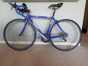 Trek 1000 Road Bike