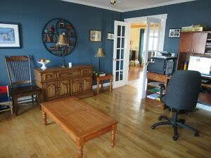 Luxury at 56 Hallstown Rd in North River - MLS 1127899 St. John's Newfoundland image 5