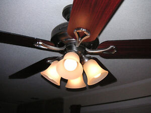 52-inch, 5 Blade Ceiling Fan with lights