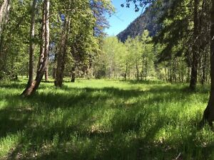Pasture for lease